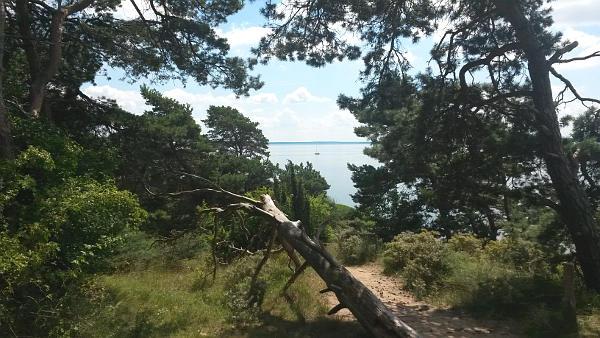 Halbinsel Gnitz-8
