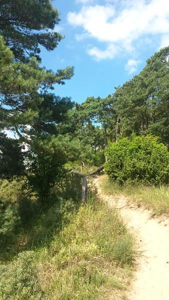 Halbinsel Gnitz-9