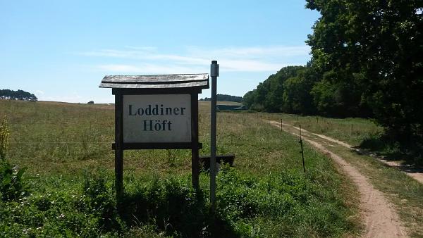 Loddiner Höft-1